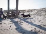 Tybee Island with Amos and Eva - 20130112 - 27