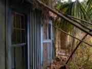 Ossabaw Island - Montemarano - 11.14.2014 - 15.59.53