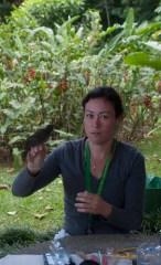 Birding at Finca Cantaros - 20130717 - 3