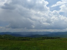 Max Patch Overlook - 05.31.2016 - 10.59.42
