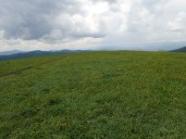 Max Patch Overlook - 05.31.2016 - 11.08.52