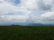 Max Patch Overlook - 05.31.2016 - 11.49.31
