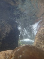 Underwater view of a riffle