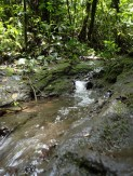 West Branch of Rio Java - 07.17.2016 - 11.10.07
