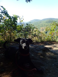 hurricane-matthew-appalachian-trail-section-hike-10-09-2016-10-03-48