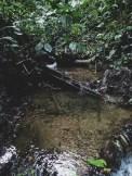 20180704 - Quebrada Cerro 007