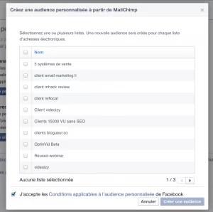 audience personnalisee facebook