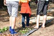 Montessori Campus Hangelsberg Clara Grunwald_Großes Campusfest vom 24. Mai 2019_2