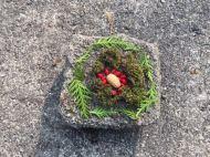 Montessori Grundschule Königs Wusterhausen_Land Art auf unserem Schulhof_2018_13