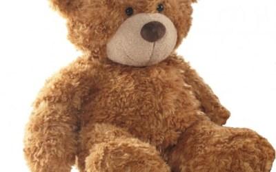 TEDDY BEAR CANLANDIRMASI