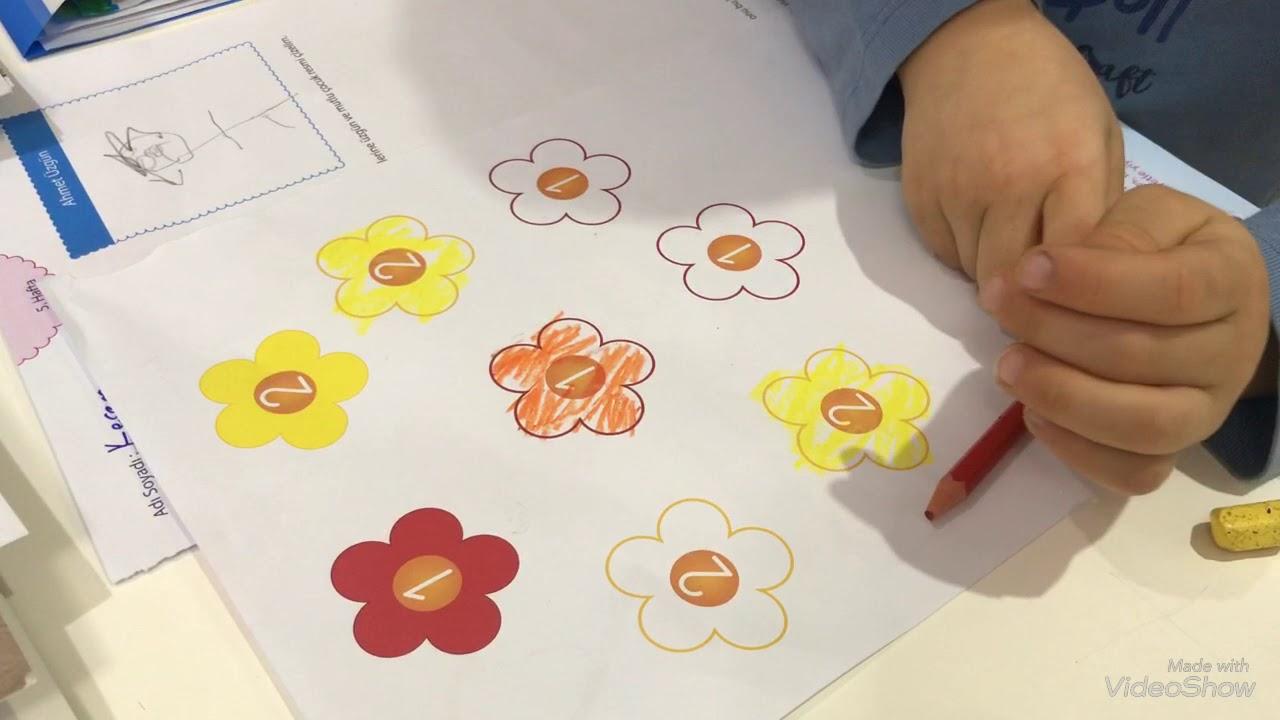 Sayilara Gore Cicek Boyama Calismasi Montessori Etkinlikleri