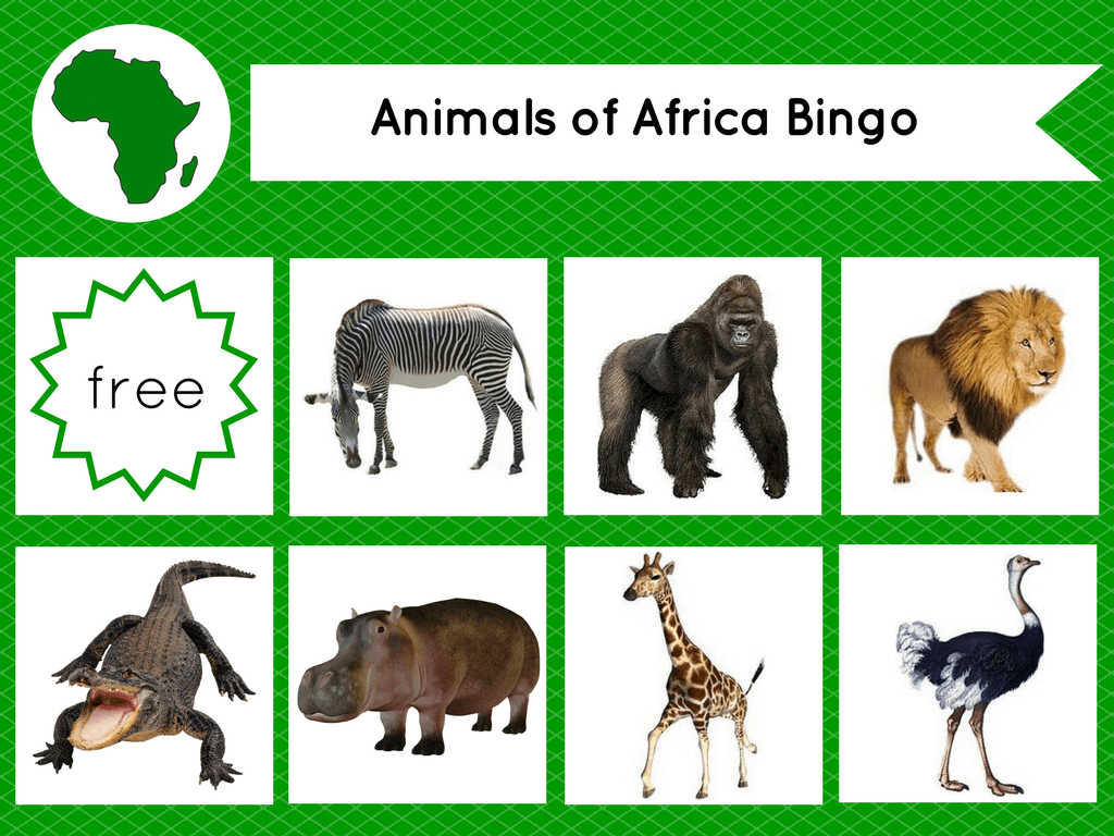 Montessori Inspired Animals Of The Continents Bingo