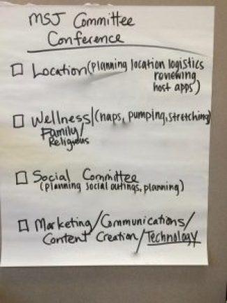 MSJ committees 2