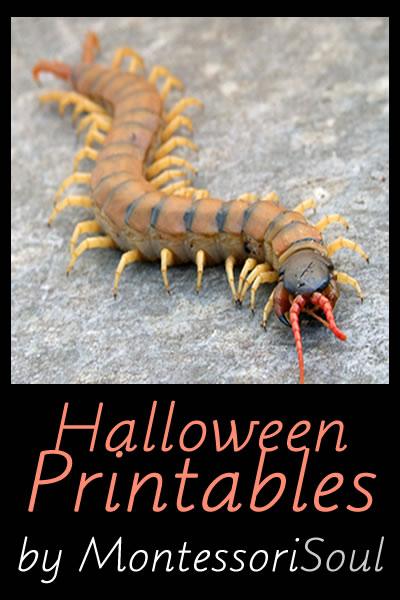 Halloween - Free Printables
