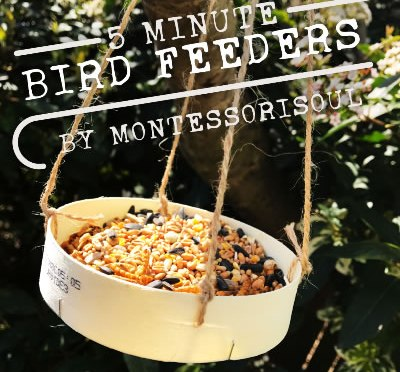 DIY Bird Feeders in 5 Minutes!
