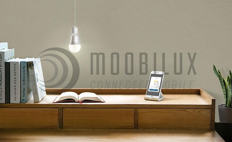 Die smarte LED-Birne LB130 als Lifestyle Accessoires. (Bild: TP-Link)
