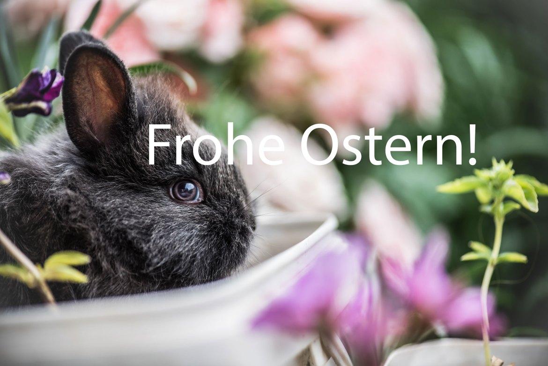 Das gesamte Team von moobilux.com wünscht allen Lesern und Leserinnen ein friedliches Osterfest!