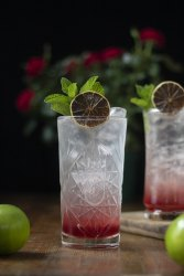 cranberry-aquavit-and-tonic-02