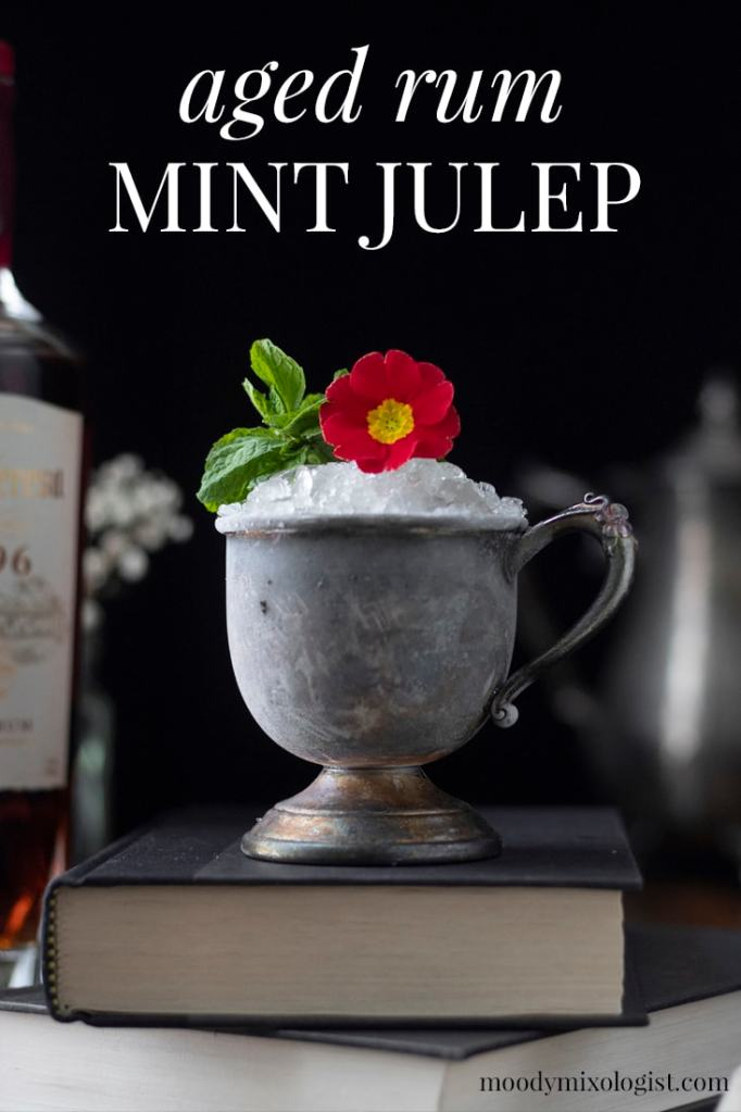 aged-rum-mint-julep-pin-8241730