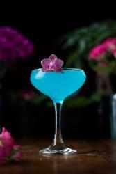 jasmine-elderflower-daiquiri-cocktail