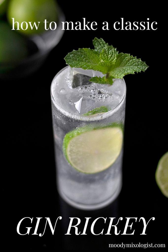 gin-rickey-pin-2-7012572