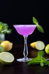 purple cocktail with citrus fruits