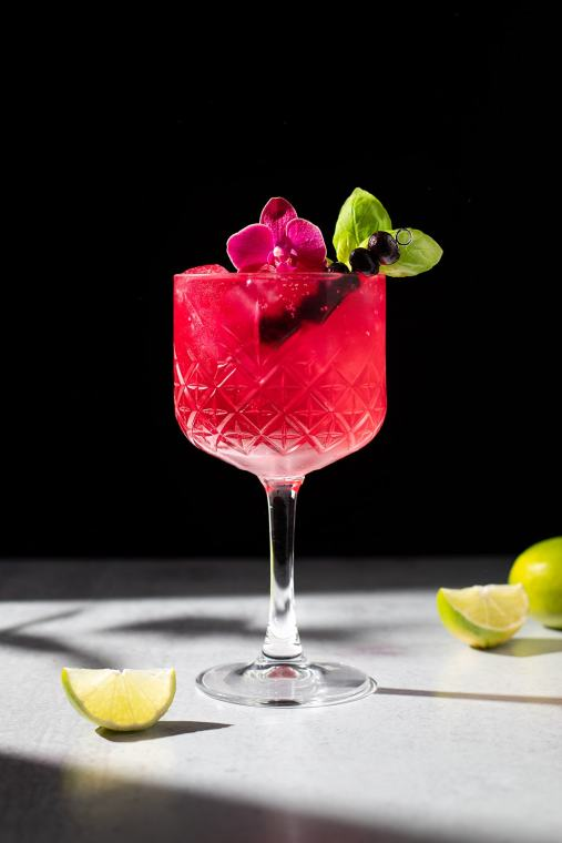 Blueberry Gin & Tonic