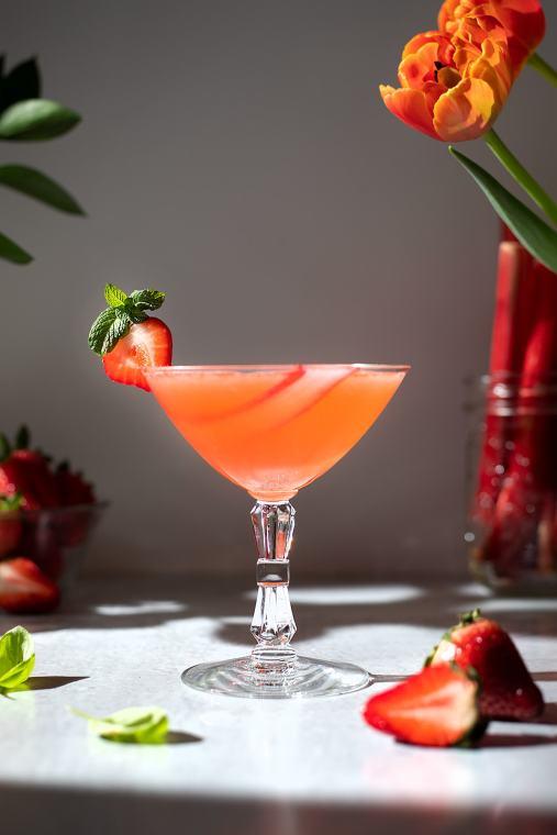 Strawberry Rhubarb Gin Sour