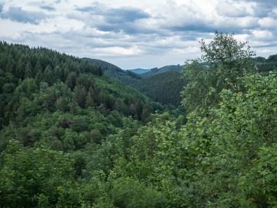 Uitzicht op het Roerdal