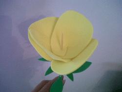 foam rose