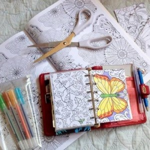 planner colouring book