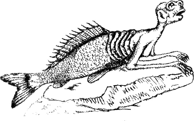 mermaid myths hoax