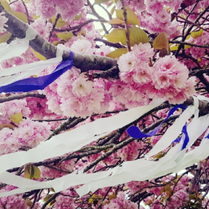 beltane may tree decorations