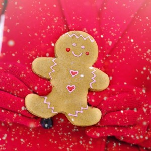 Poetry by Kristin Garth: Gingerbread Girl