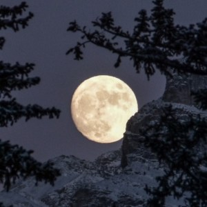 Poetry by Linda M. Crate: moon archer