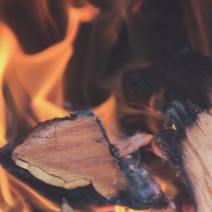 Poetry by Alison Jones : Kindling