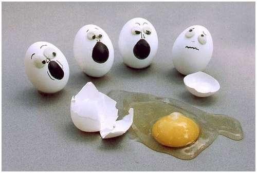 egg, egg funny, telur kelakar,