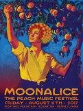 M1005 › 8/11/17 The Peach Music Festival, Scranton, PA poster by Alexandra Fischer