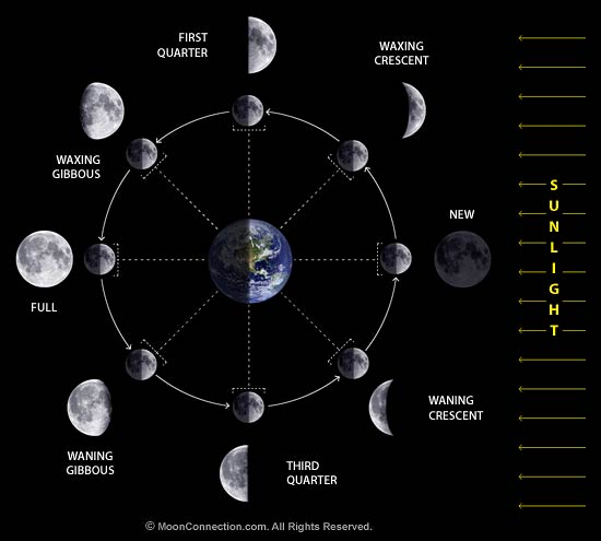https://i1.wp.com/www.moonconnection.com/images/moon_phases_diagram.jpg