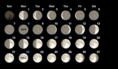 Image result for moon phase picture