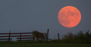 Harvest_moon2