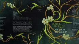 De amor y de sombra. Isabel Allende