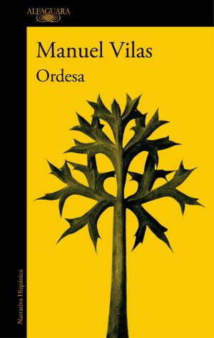Dieciséis novelas recomendadas. Ordesa. Manuel Vilas