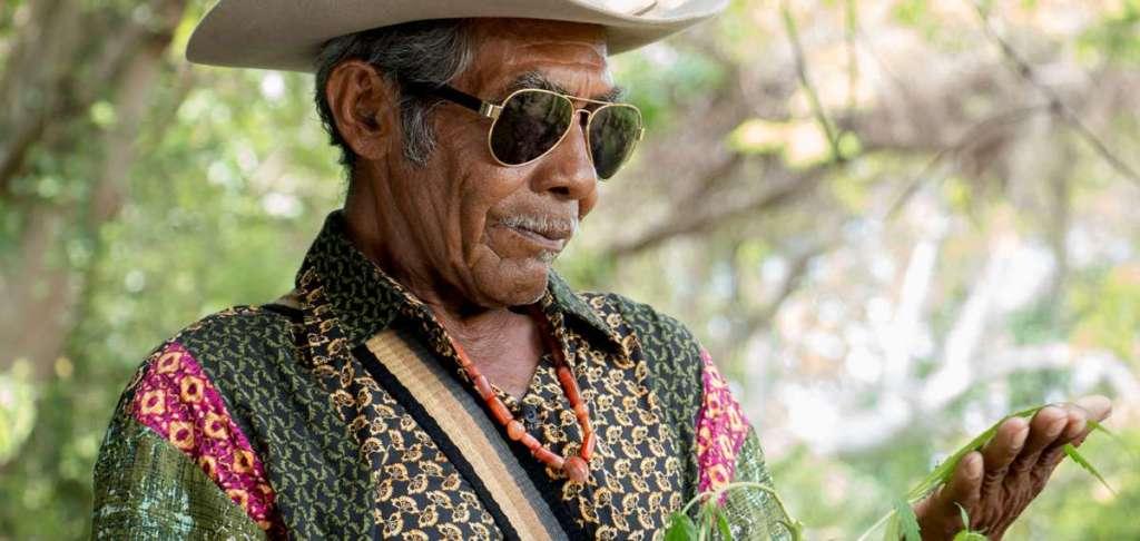 Pájaros de verano: El destino de una saga criminal wayúu que cambió la palabra por las armas 1