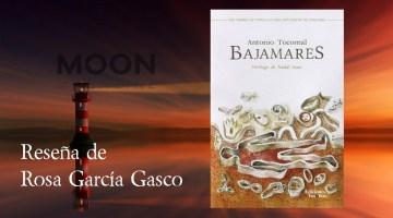 Bajamares, Antonio Tocornal: voces infinitas a la orilla de un mar inmisericorde 2