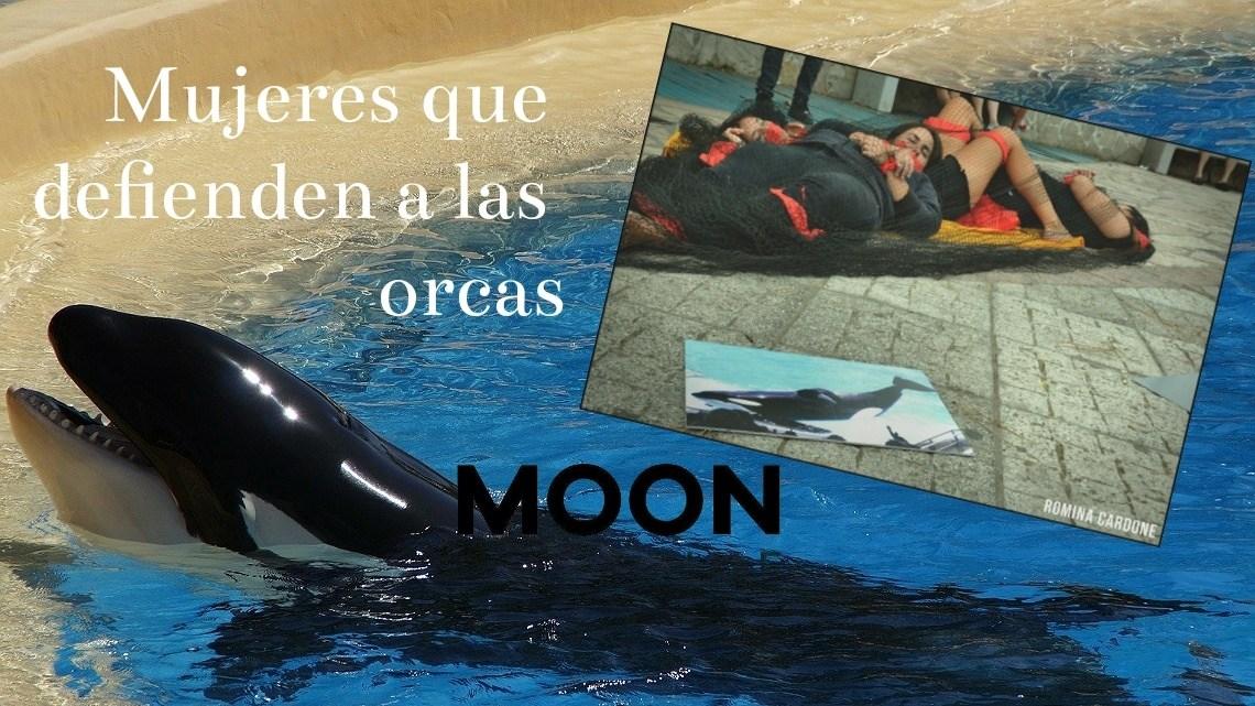 Mujeres que defienden a las orcas 14