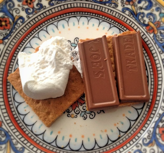 Give up chocolate?! Gasp! What was I going to do? I was going to go out with a bang that's what. Hello s'mores.