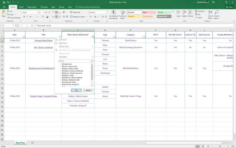 Blog Tracker in Excel