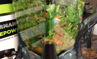 Ninja 1500 watt mega kitchen system box blender raw vegetables in container blending