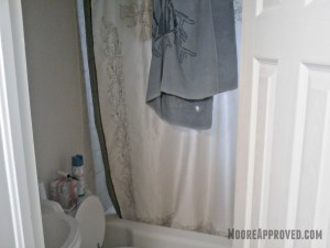 Moore Approved St Petersburg House Bathroom Before
